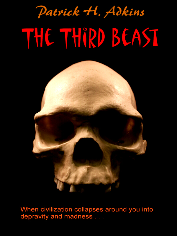 Third Beast ebook cover
